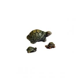 Dd-50 Schildpadden