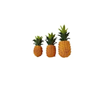 Vfr-05 Ananas / per stuk