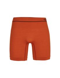 Icebreaker Mens Cool-lite Antomica long boxers  / Roote - Large