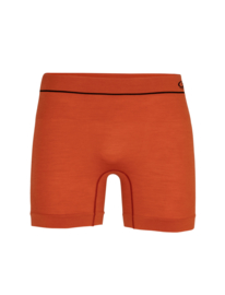 Icebreaker Mens Cool-lite seamless boxers / Roote - M-L