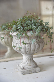 SHABBY FLOWER POT  - Jeanne d 'Arc Living -