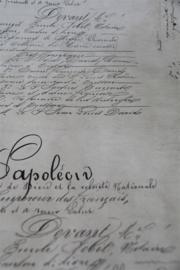 CADEAU PAPIER - NAPOLEON DOCUMENT - 5m - Jeanne d 'Arc Living