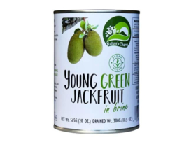 green jack fruit 565 gr