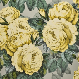 John Derian for Designers Guild PJD6002/05 The Rose