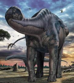 Komar Into Adventure IANGX5-007 National Geographic Seismosaurus 250cm x 280cm hoog