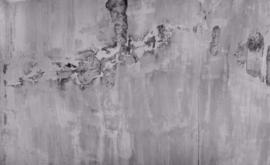 Rasch Factory 439915 digitaal geprint fotobehang 424 x 260cm hoog