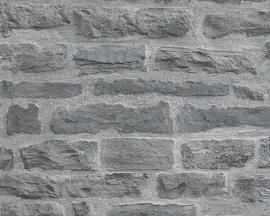 Behang AS Creation Decoworld 2 - 31944-2 bakstenen