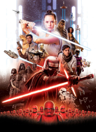 Komar fotobehang 4-4113 Star Wars Movie Poster Rey