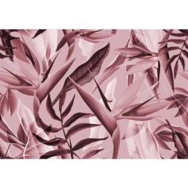 Fotobehang Tropicalia Roze