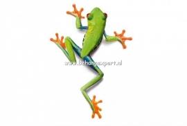 Fotobehang AP Digital 470032 Frog