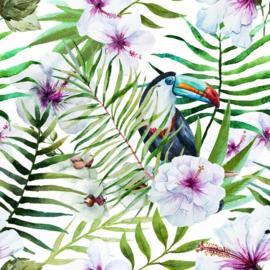 AS Creation Greenery Toucan DD116611 fotowand