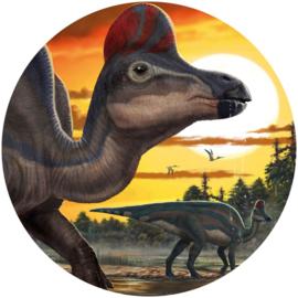 Komar Into Adventure DNG1-002 National Geographic DOT Corythosaurus cirkel zelfklevend 125cm