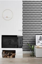 Esta Black&White 128845