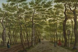 Dutch Painted Memories 8019 Het Heerepad in het Haagse Bos - Paulus Constantijn la Fargue