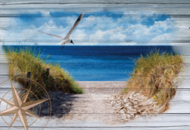 Fotobehang Path to Beach