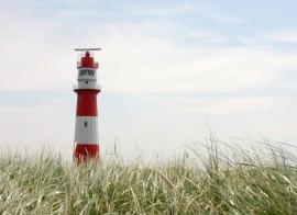 Esta Home Regatta Crew (B) 156432 PhotowallXL lighthouse