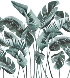 Esta Jungle Fever 158898 Photowall XXL grote bananenbladeren