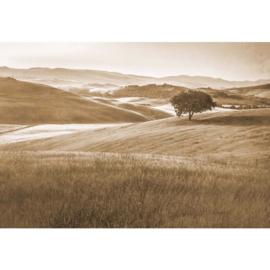Fotobehang Heuvellandschap Vintage in Sepia
