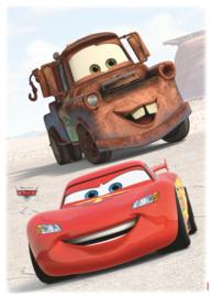 Wandsticker Cars Friends 14015