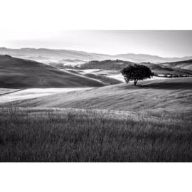 Fotobehang Heuvellandschap Zwart Wit