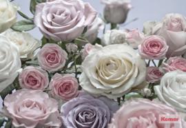 Komar 'Beauties' 8-736 Floraison