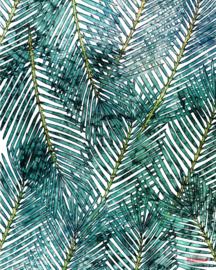 Komar Palm Canopy P025-VD2