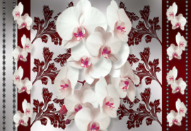Fotobehang Orchids Red