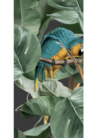 Kek Wonderwalls Pattern Wallpaper Botanical Birds