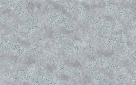 Komar Raw R4-042 Pristine