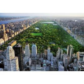 Fotobehang Idealdecor 00163 Central Park