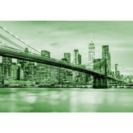 Fotobehang Brooklyn Bridge NYC Groen