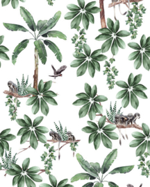 Creative Lab Wallpaper on roll Curious Little Monkey
