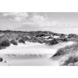 Fotobehang Duinlandschap Zwart Wit
