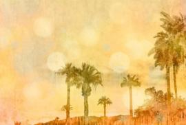Fotowand Palm oasis 1 by Andrea Haase afm. 400cm x 270cm hoog