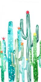 Esta Greenhouse 158829 photowall XXL cactus painting