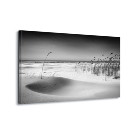 Canvasdoek Strand