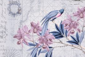 Fotowand Bird discovery 2 by Andrea Haase afm. 400cm x 270cm hoog