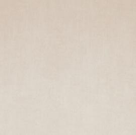 BN Color Stories 18451 Sandstorm