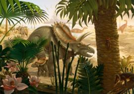 Komar Into Adventure IANGX8-004 National Geographic Anchieratops Jungle  400cm x 280cm hoog