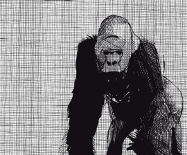 Dutch DigiWalls Due - art. 2033 Gorilla