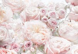 Komar 8-976 Spring Roses 368cm x 254cm hoog