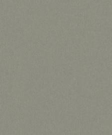 BN Zen 220263 Canvas