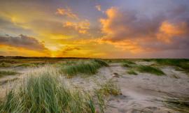 Fotobehang Holland 0356 - Schiermonnikoog duinen