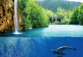 Fotobehang Waterval dolfijnen