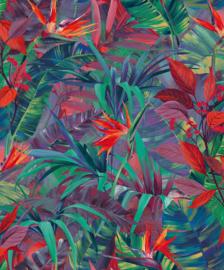 Dutch Jungle Fever JF2301