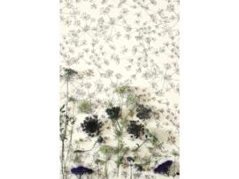 Fiona Botanic Garden 510332