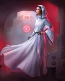 Komar fotobehang DX4-046 Star Wars Classic Leia