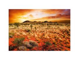 Fotobehang Australisch landschap