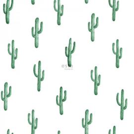 Esta Greenhouse 138900 cactus