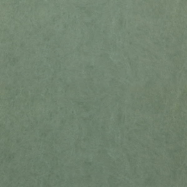 Dutch Wallcoverings Chroma 60-Forest